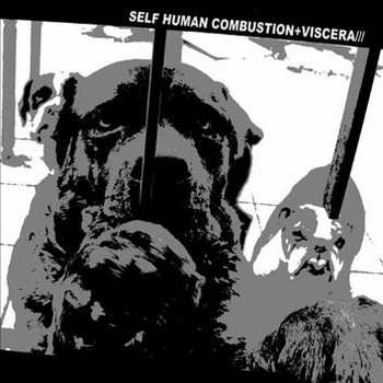 Self Human Combustion / Viscera/// - Split