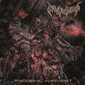 Envenomation-Pyogenic_Harvest