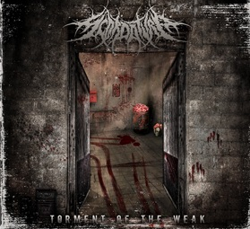 Scordatura-Torment_Of_The_Weak