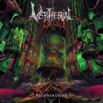 Verthebral - Regeneration