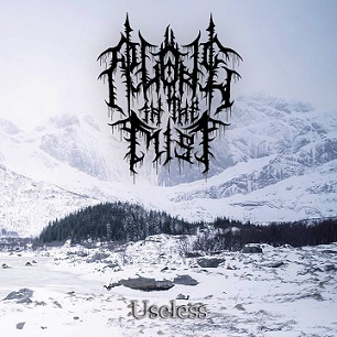 Alone in the Mist - Useless